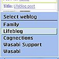3b. Here I am selecting  one of my blogs. There are all TypePad blogs, so the ones that I am author on also show up.